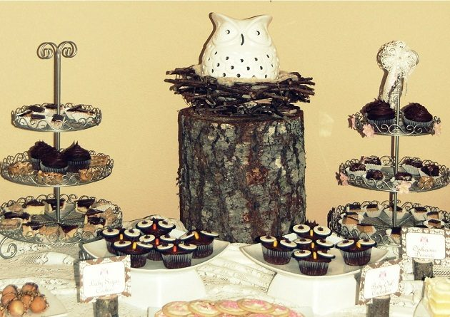 Owl Themed Baby Shower {guest feature}