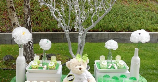 Lime Inspired Baby Shower {Vendor Challenge}
