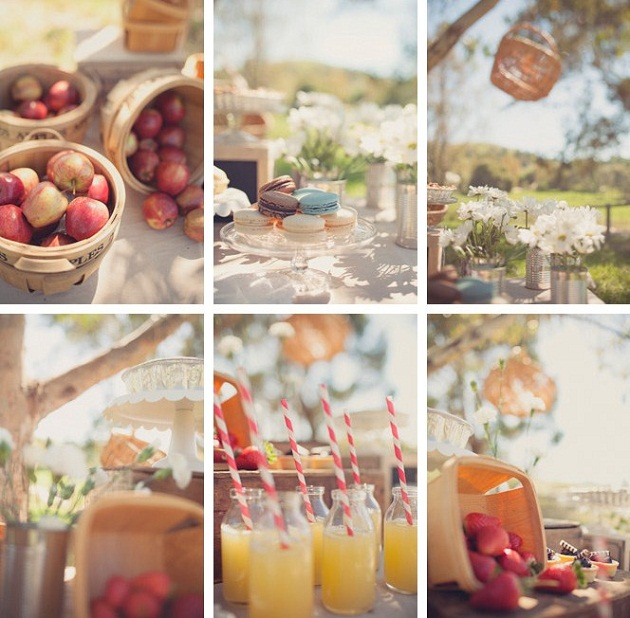 outdoor picnic collage