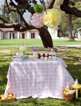 Lemonade Stand-Nicole Benitez Photography-_003
