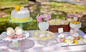 Lemonade Stand-Nicole Benitez Photography-_005