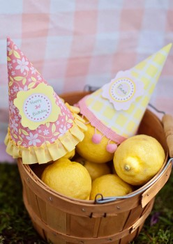 Lemonade Stand-Nicole Benitez Photography-_008