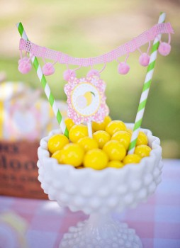 Lemonade Stand-Nicole Benitez Photography-_016