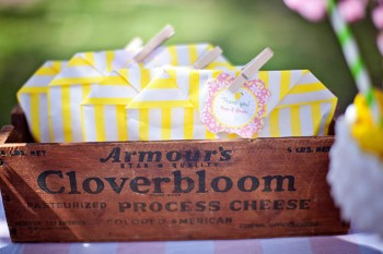 Lemonade Stand-Nicole Benitez Photography-_017