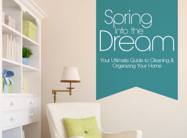 Spring Cleaning & Organizing Guide