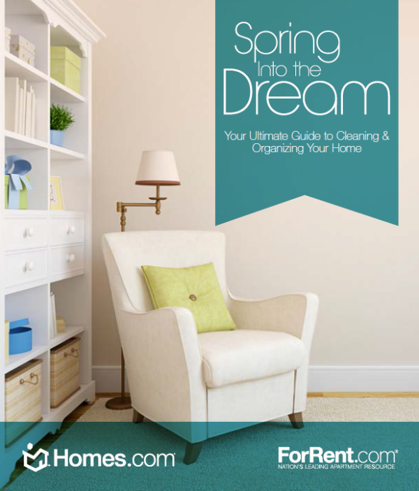Spring-Into-the-Dream ebook