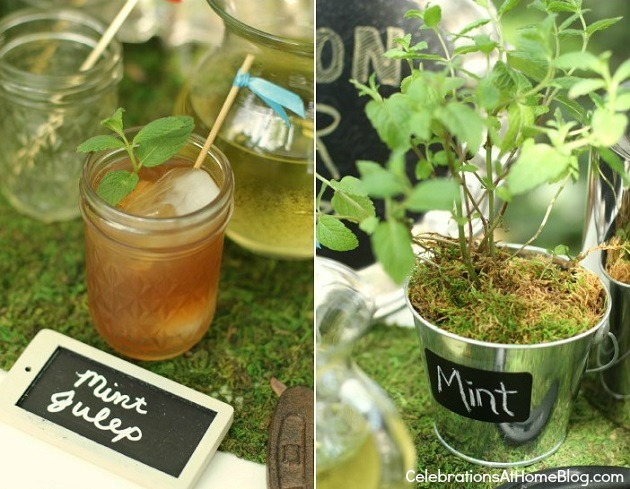mint julep recipe - bourbon tasting bar