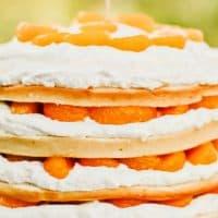 4 Layer Orange Cake Recipe