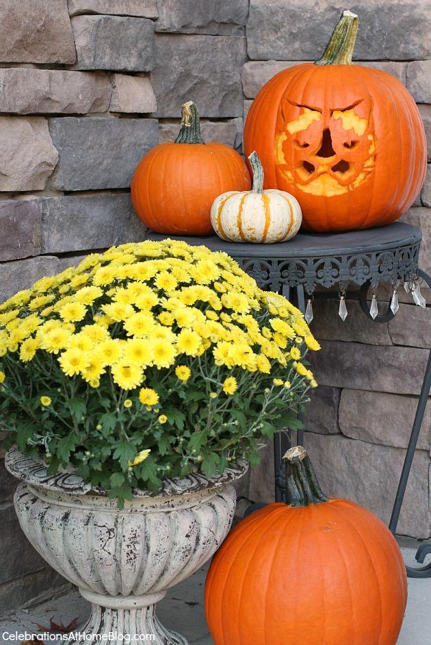 grumpy cat pumpkin carving party