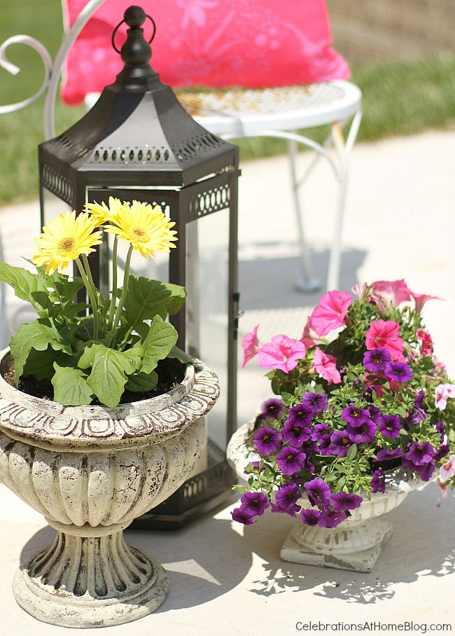 Create a cozy spot for entertaining outdoors, with flowers and plants.