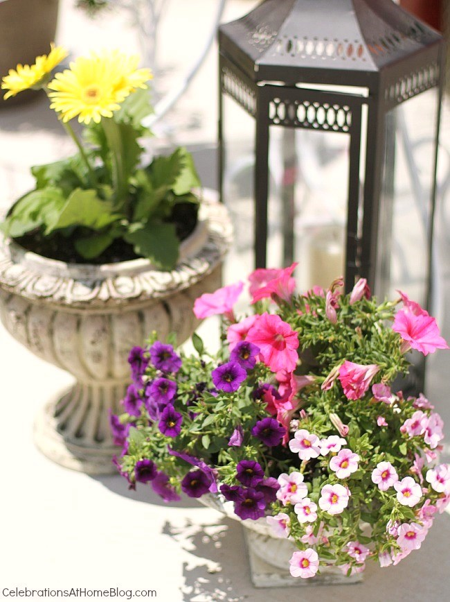 Create a cozy spot for entertaining outdoors, using flowers and plants to help set the scene.