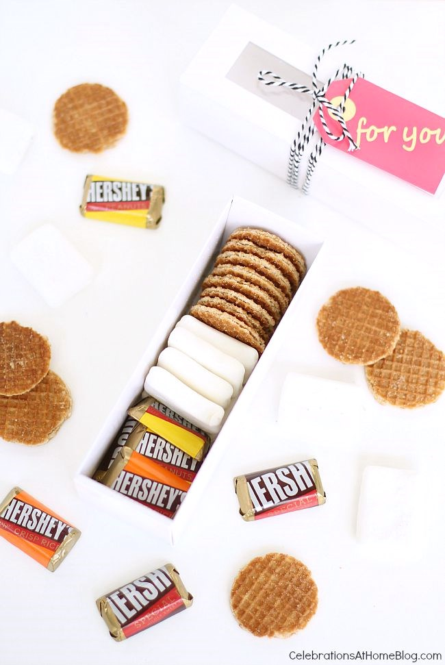 mini smores kit favors in box