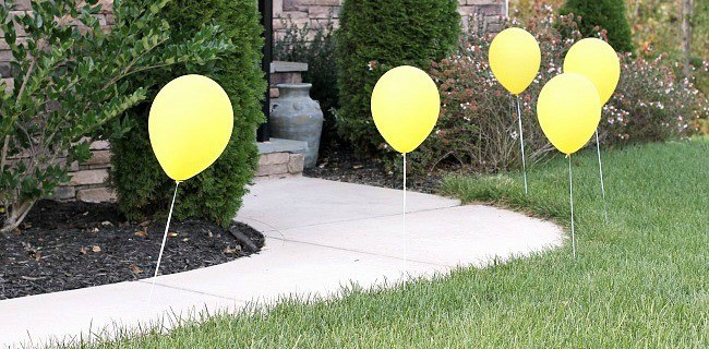 Outdoor Birthday Party Decor