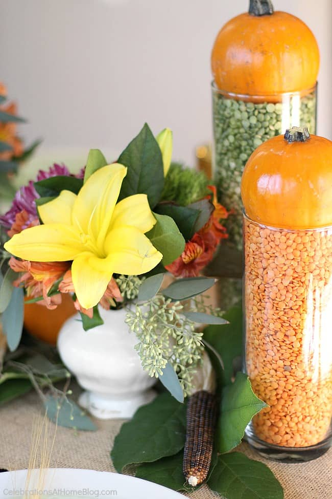dried lentils in glass vase topped with mini pumpkins