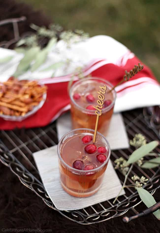 Enjoy this cranberry cinnamon cocktail while sitting by the fire on a cool night. It's the perfect sipping drink that's not too boozy