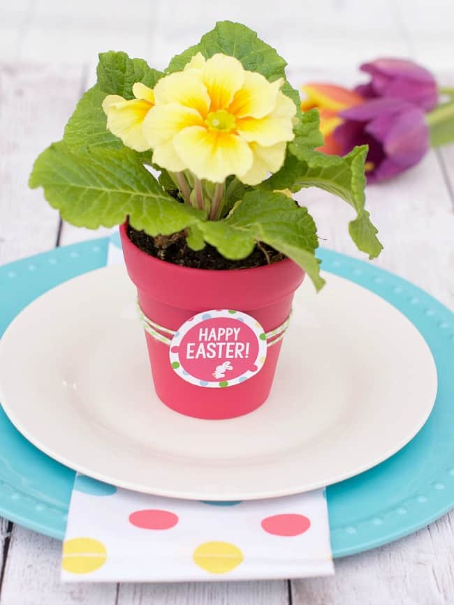 Easter dinner plan; Easter dinner party - Easter favors