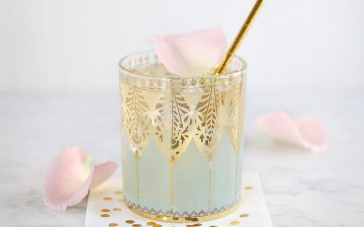 Elderflower Gin Fizz Cocktail
