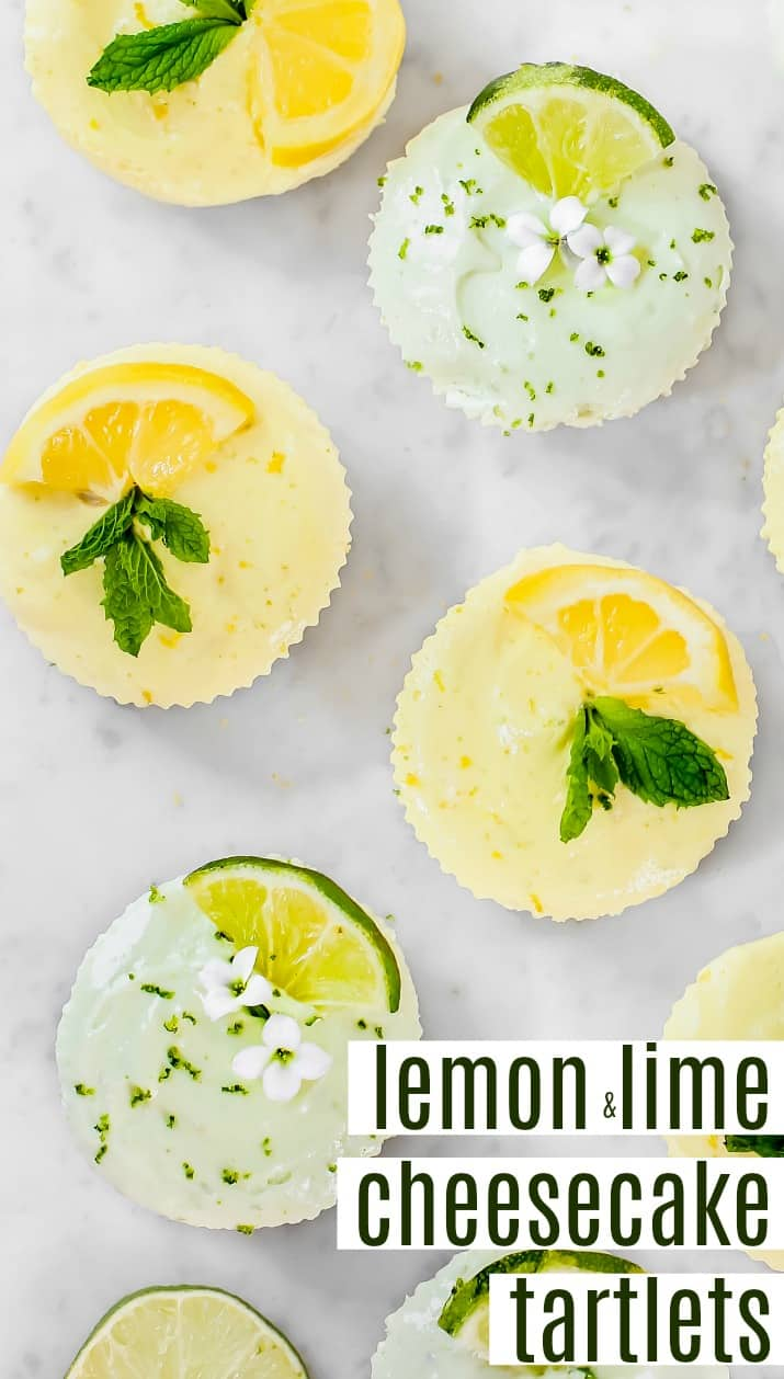 lemon lime cheesecake tartlets