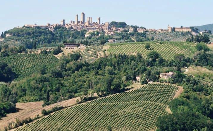 Our Wine Tasting Tour in Tuscany