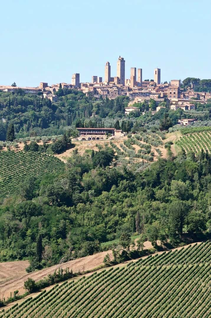 A Day Wine Tasting tour in Tuscany; view of San Gimignano