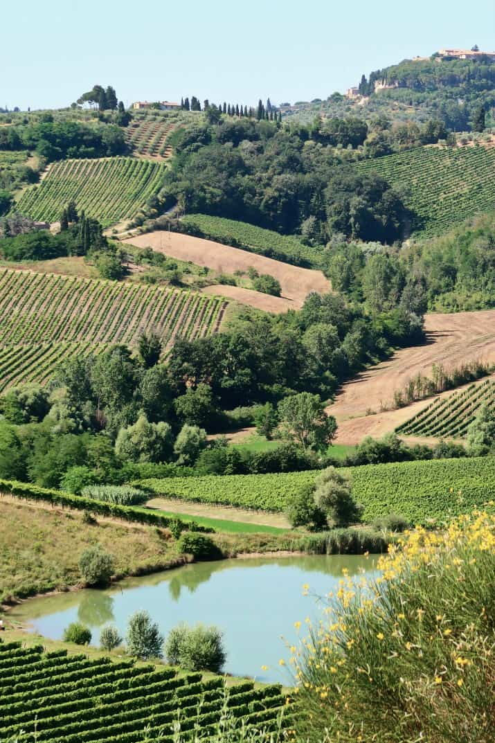 Wine Tasting Tour in Tuscany, countryside view