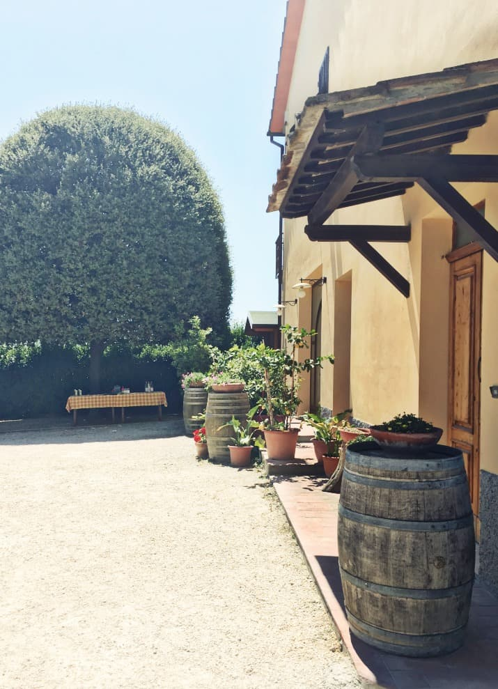 Wine Tasting Tour in Tuscany, winery