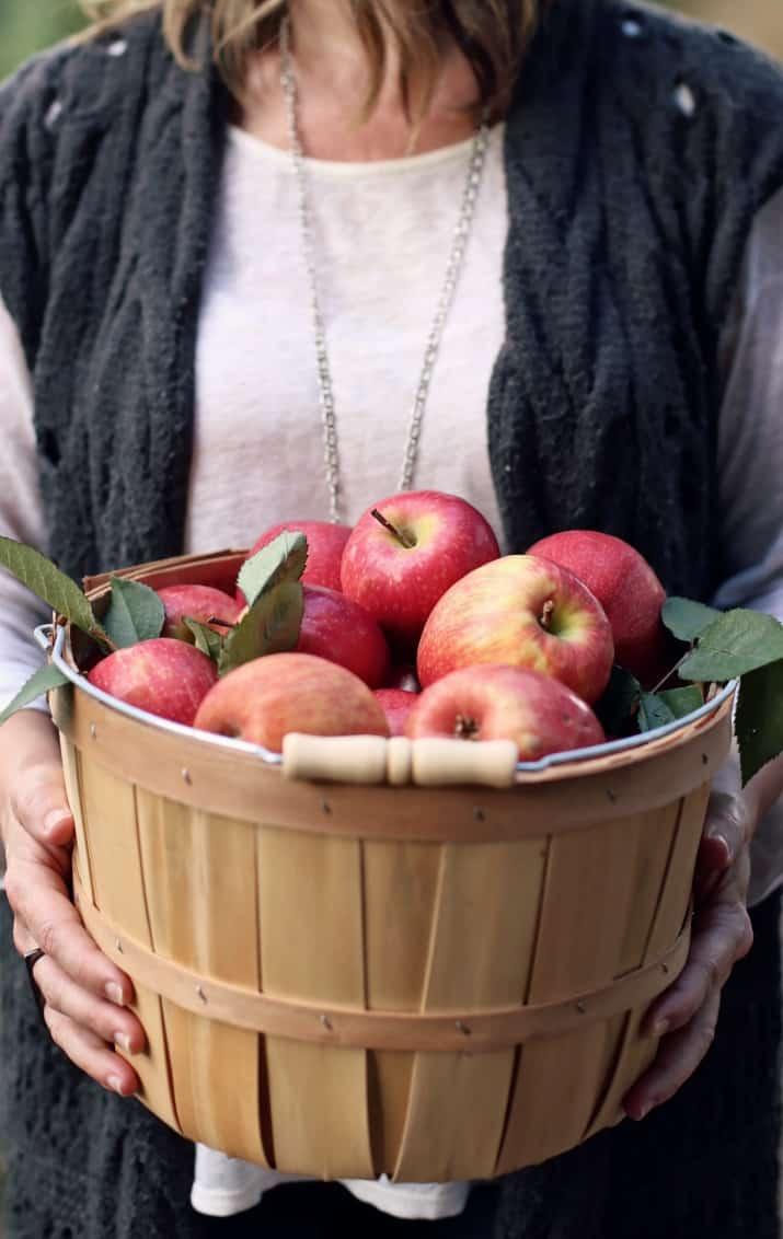 apple picking, female holding basket of apples