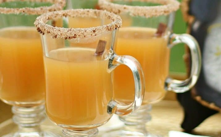 Spiced Apple Hot Toddy Recipe