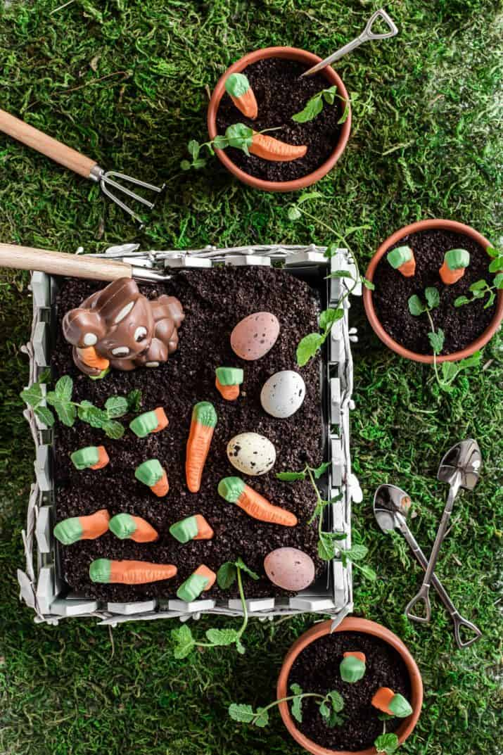 overhead view of garden dirt cake with candy carrots decoration